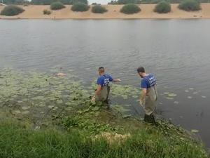 Тело мужчины нашли в Гребном канале Нижнего Новгорода