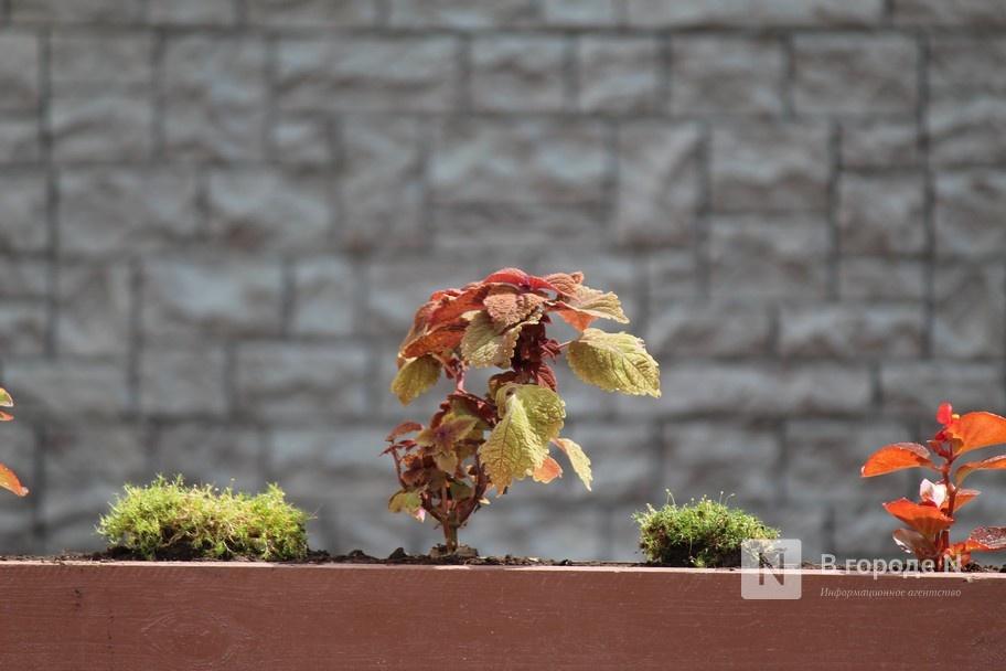 «Создать комфорт и подчеркнуть наследие», - Дарья Парамонова о благоустройстве Большой Покровской - фото 5