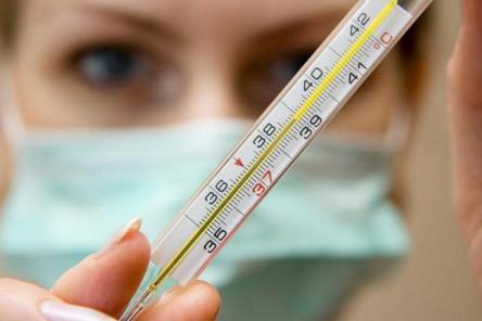 Эпидемия гриппа 2016