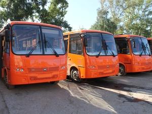 «Нижегородпассажиравтотранс» арендует 50 автобусов почти за 3 млн рублей