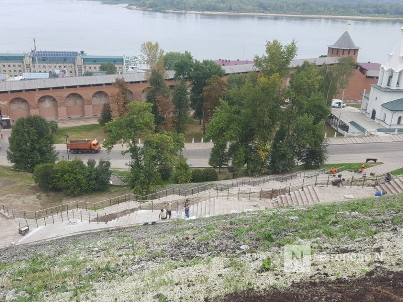 Три точки общепита в Нижегородском кремле начнут работать с 1 октября - фото 1