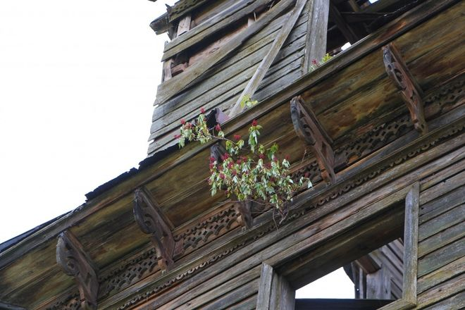 Как умирает нижегородское зодчество: история последней деревянной церкви в Лысковском районе - фото 9