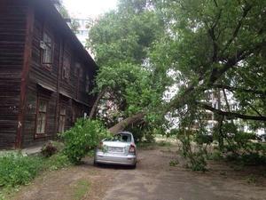 В Нижегородской области 87 населенных пунктов остаются без света после урагана