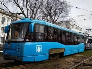 Движение трамваев 3-го и 21-го маршрутов остановлено из-за упавшего дерева