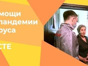 Студенты политеха помогают пожилым нижегородцам во время пандемии
