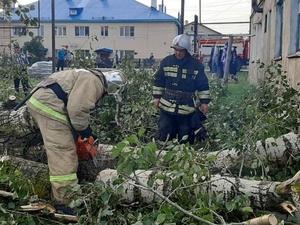 Из-за урагана в Первомайске и окрестностях остались без электричества более 350 домов