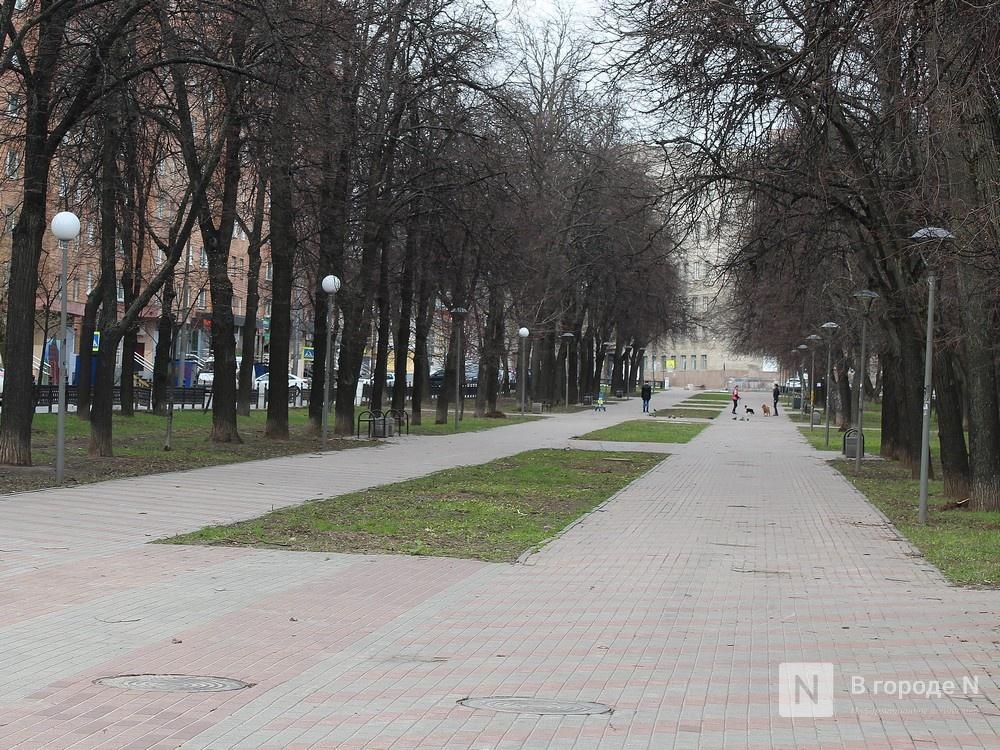 Сквер на Звездинке благоустроят за 32 млн рублей - фото 1