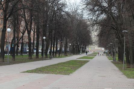 Сквер на Звездинке благоустроят за 32 млн рублей