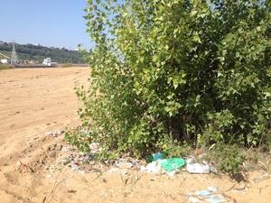 Волонтеры очистят от мусора территорию на Гребном канале