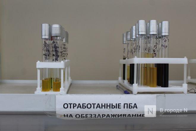 Что скрывает колбаса: нижегородские специалисты на страже качества - фото 39