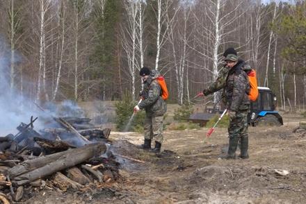 Пятый класс пожароопасности торфяников ожидается в Нижегородской области 19—21 июня