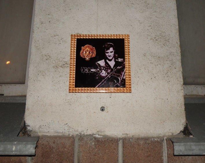 Элвис и его перстень украсили стену одного из домов на улице Горького - фото 2