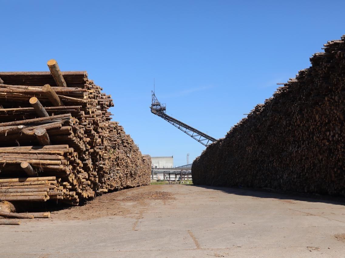 На 20% увеличится производство бумаги на балахнинском бумкомбинате - фото 1