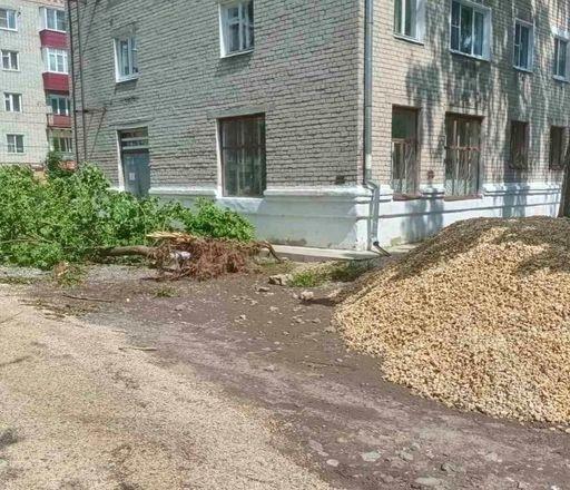 Общественники признали неудовлетворительным благоустройство в Кулебаках - фото 5