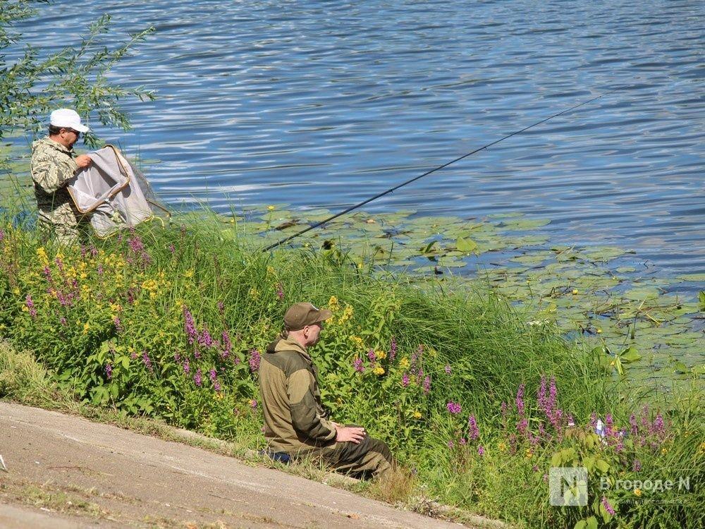 Набережную Гребного канала благоустроят за 150 млн рублей - фото 1