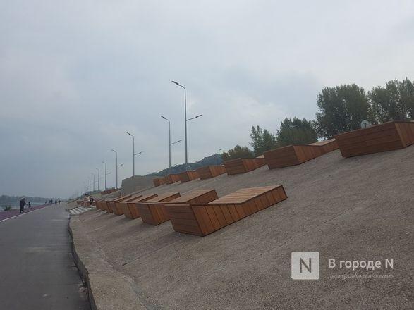 Велодорожка и сады на бетонном склоне: новая жизнь набережной Гребного канала - фото 21