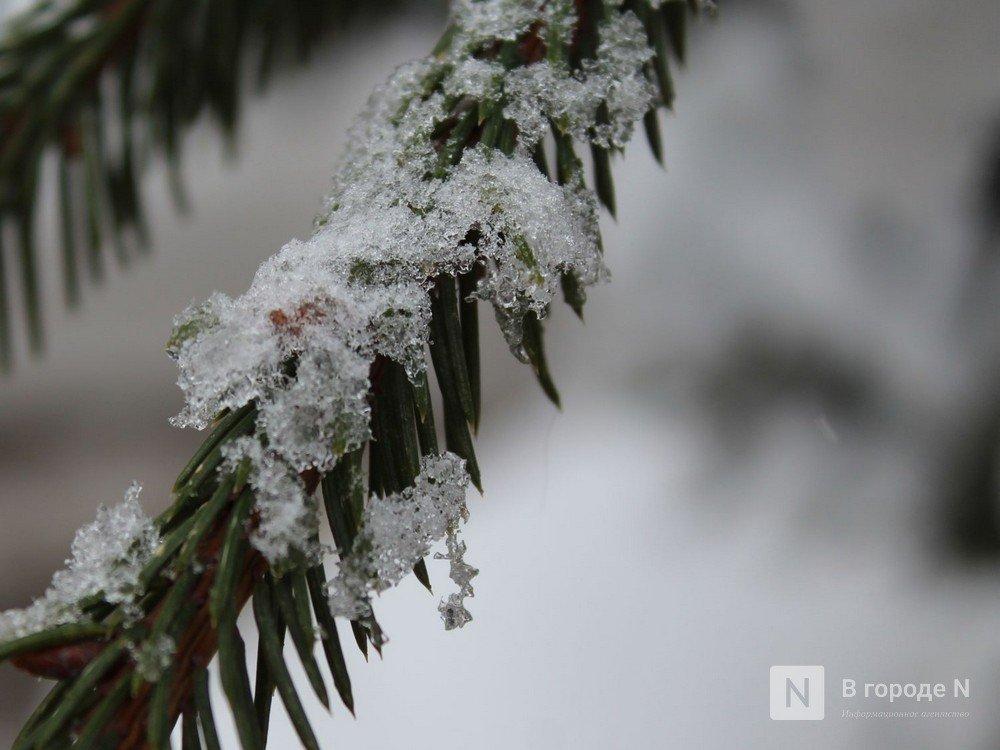 Оттепель, мокрый снег и дожди ожидаются в Нижнем Новгороде в выходные - фото 1