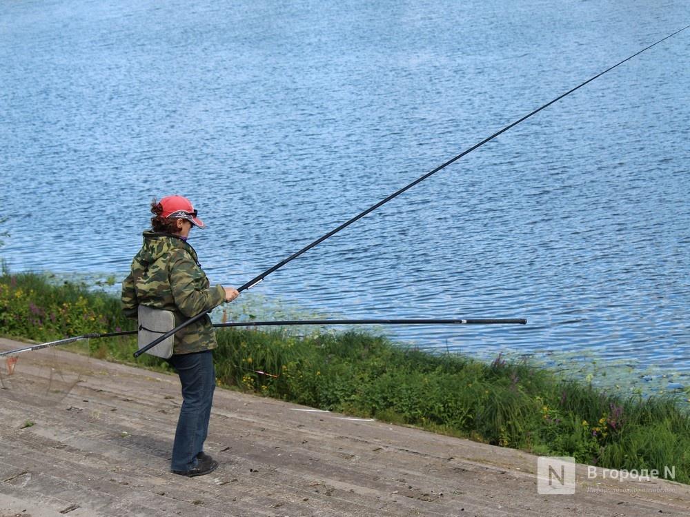 Праздник в пандемию: как Нижний Новгород отметил 799-летие - фото 6